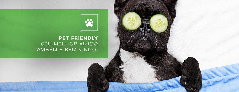 Banner Pet Friendly - Pet Amigo